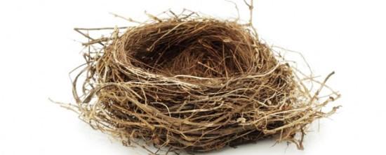 Empty-nest-